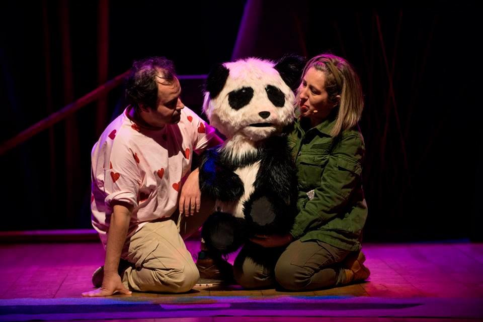 A nova montaxe da compañía de espectáculos infantís xira arredor do derradeiro oso panda do planeta