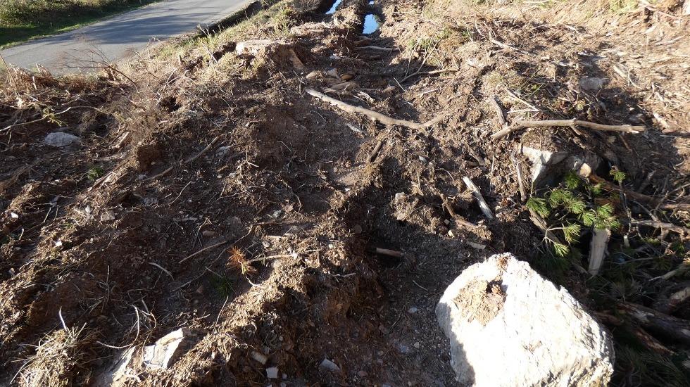 Traballos forestais destrúen o único dolmen do concello de Baleira
