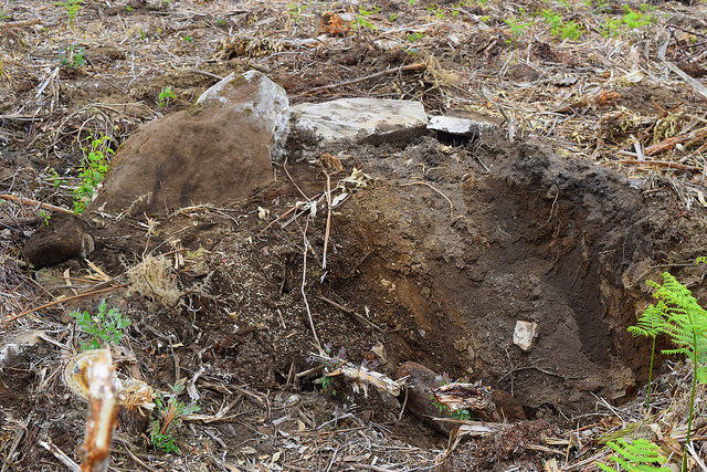 Denuncian a destrución e espolio dun dólmen no Valadouro