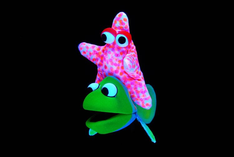 Estrela e Peixe