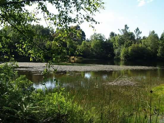 O lugar de Xermade alberga importantes poboacións de insectos e de anfibios