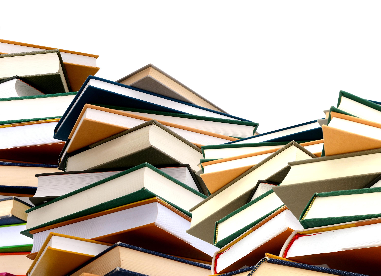 O Plan de Dinamización de Lingua para a Mocidade e un maior apoio ás bibliotecas municipais son as grande novidades neste campo