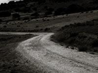 A Consellaría de Medio Ambiente recuperará 746 quilómetros de vías