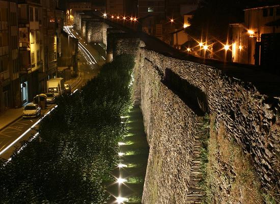 A conservación dos bens culturais galegos non ten en conta as especies animais que viven neles