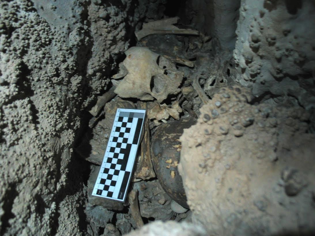 Un equipo galego e británico analiza o maior conxunto de restos humanos da Prehistoria do país