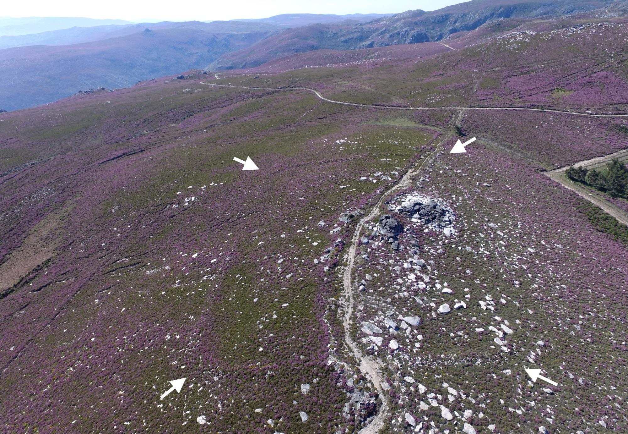 Localizan catro novos campamentos romanos temporais en Lugo e Ourense