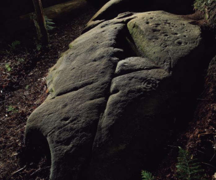 Publica os petróglifos de animais máis ao norte de Galicia