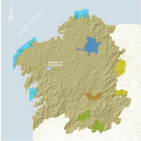 O web de Turgalicia achega múltiplos recursos para observar aves no país
