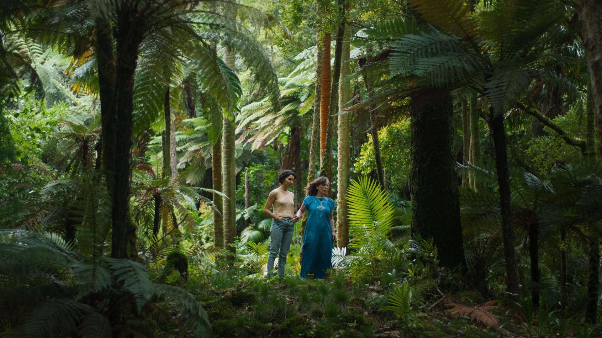 A curtametraxe foi seleccionada para a sección paralela do festival francés